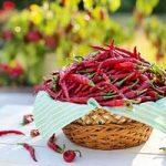 Comment utiliser le piment de Cayenne pour maigrir