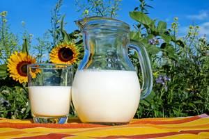 Poudre de lactoserum pour prendre du poids
