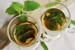 thé persil pour perdre du poids